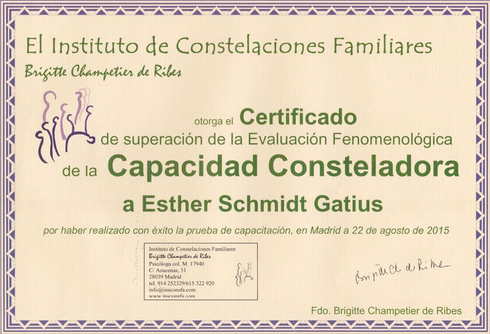 instituto-constelaciones-familiares